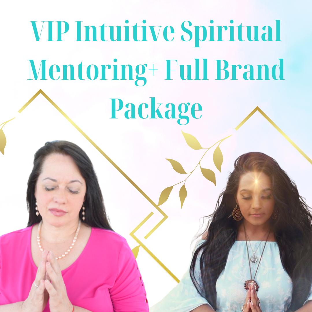 VIP Mentoring + Full Website