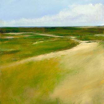 anne-packard-inland-marsh_9_40x26.jpg