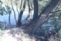 35-DSC_4853_edited.jpg