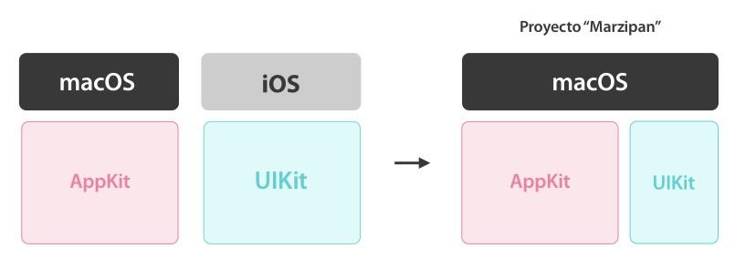 macOS utiliza AppKit y iOS utiliza UIKit para el desarrollo de su interfaz gráfica.