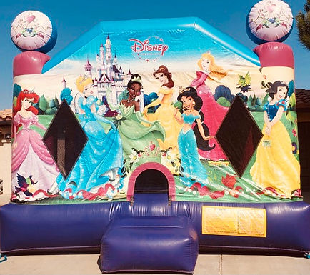 Disney Princess web.jpg
