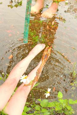 watering ho
