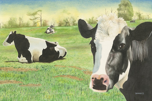 Art for farmhouse decor, cow art, farmhouse decor