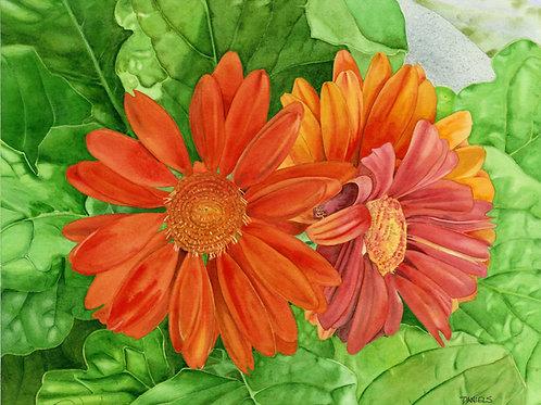 Fall Decor Print, Orange Decor, Floral Watercolor Print, daisy art