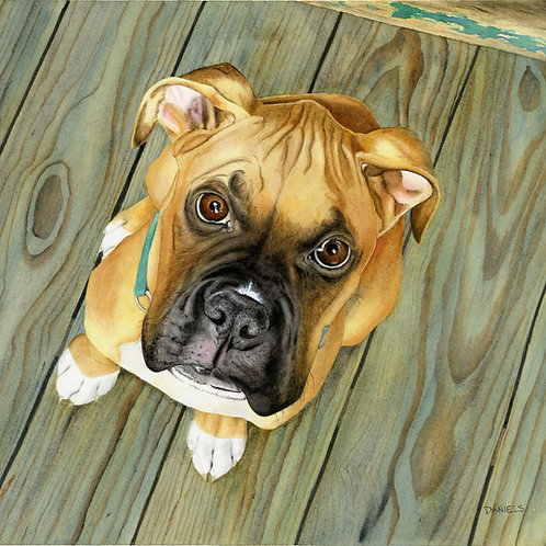 Whatcha Eatin? Original Watercolor 17x15 inches