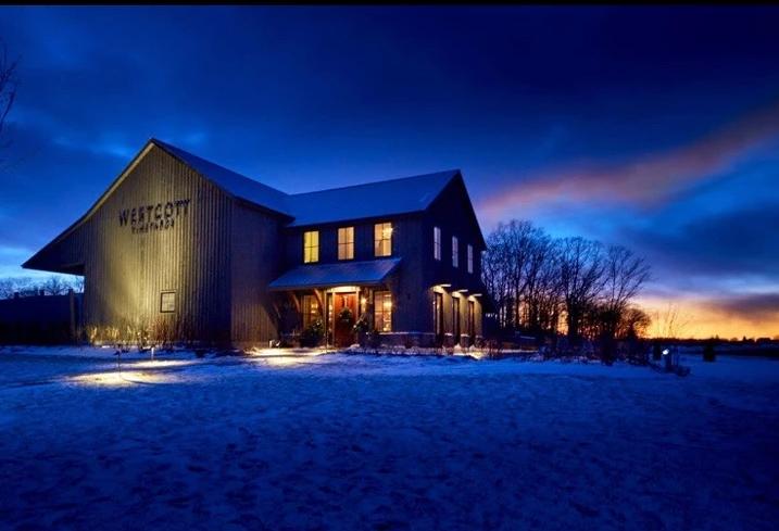 Landscape Lighting during Winter in Ontario