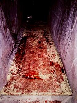 Bloody Room from Fear: Winnipeg Halloween Event