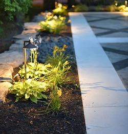 Plant Lighting 2