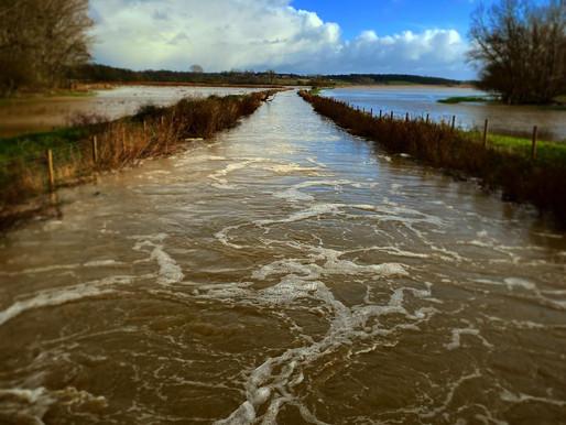 Waveney Valley Floods