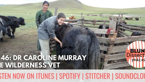 Blunt Dissection Ep 46: Dr Caroline Murray - The Wilderness Vet