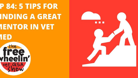 Freewheelin' Ep 84: 5 Tips For Finding a Great Mentor In Veterinary Medicine