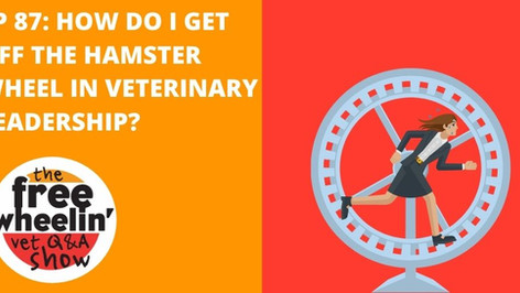 Freewheelin' Ep 87: How Do I Get Off The Hamster Wheel In Veterinary Leadership?