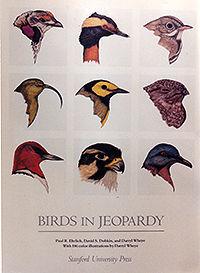 200croppedBirds in Jeopardy poster_20190