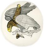 plate 26. Modified Detail of Ten Drachma