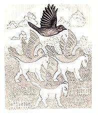 200croppedBirds+Horses MC EscherBio of B