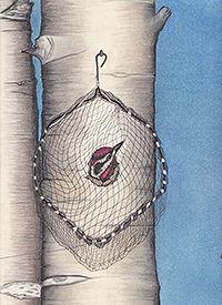 200Sapsucker and Net American Birds _201
