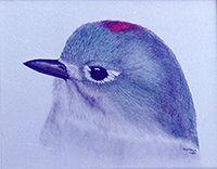 200croppedNeighborhood Birds Ruby-crowne