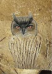 200Chauvet owl.jpg