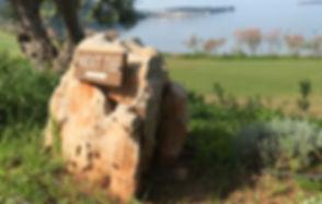 next_golf.jpg