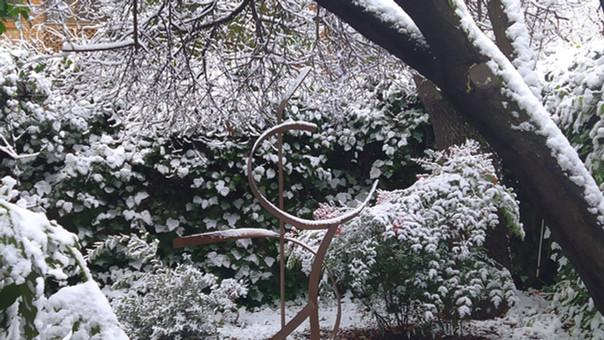 2021- EL VUELO, nevado.