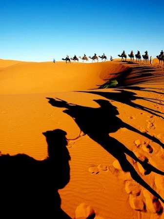 Sahara+desert.+Morocc.jpg