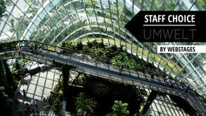 STAFF CHOICE: Die besten Umwelt-Influencer der Schweiz