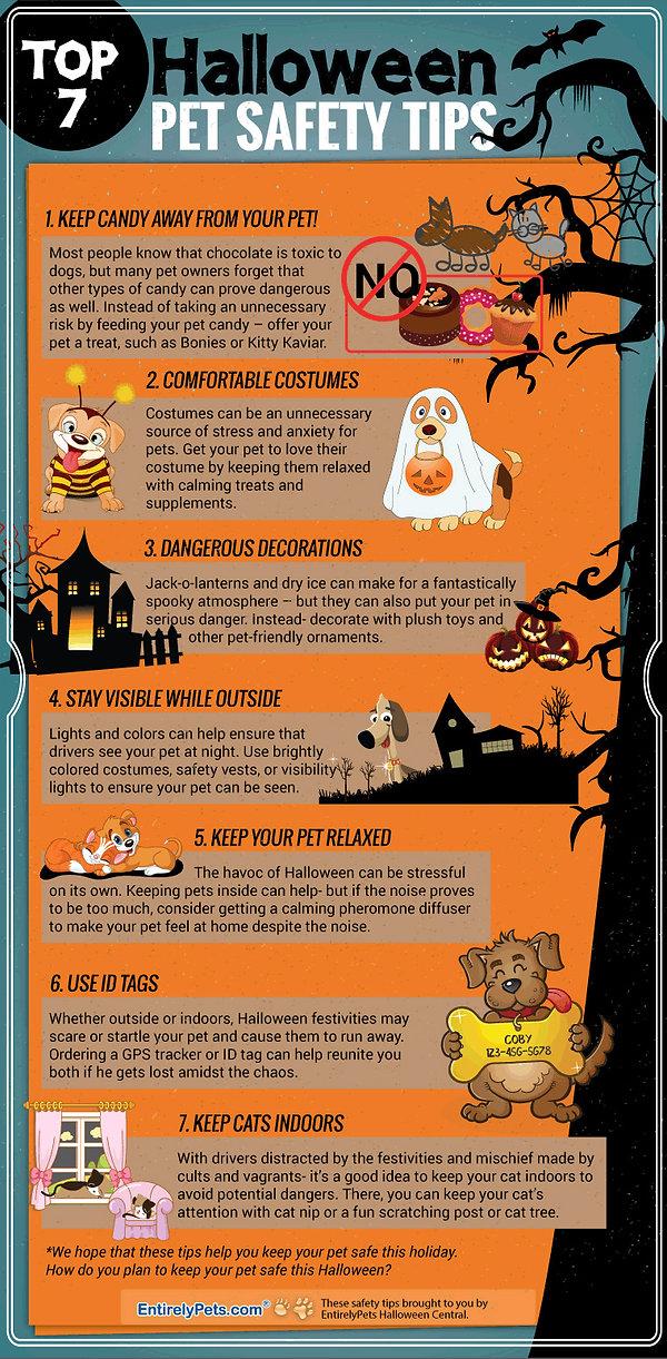 7-Halloween-safety-Tips.jpg
