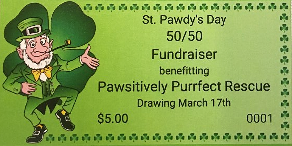 St. Pawdy's Day 50/50