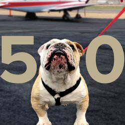 500.1