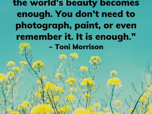 The World's Beauty