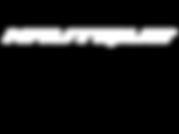 Nautique Logo - WhiteLP.png