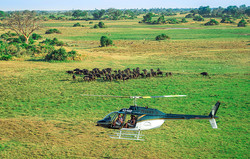 9.-Helicopter-Safaris-web1