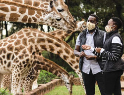 The-safari-Collection-During-your-safari