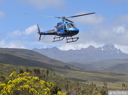 helicopter-safaris