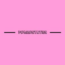 FERMENTATION - EMMA INCH