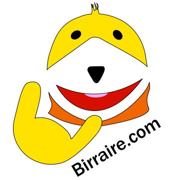 birraire_logo (1)