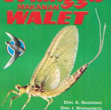 Serangga walet