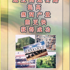 Swiftlet Highway (chinese)
