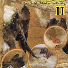 Nest Tech Book 2