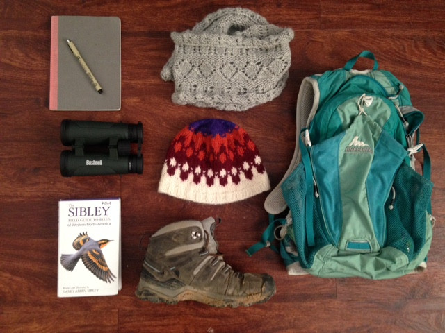 Winter birding essentials.