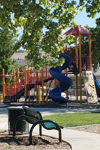 The Park Today