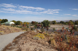 6 Bartley Ranch Site 1 Fall 2015 (low)