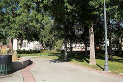 1 Bicentennial Park Site 4 Autumn 2015 (low)