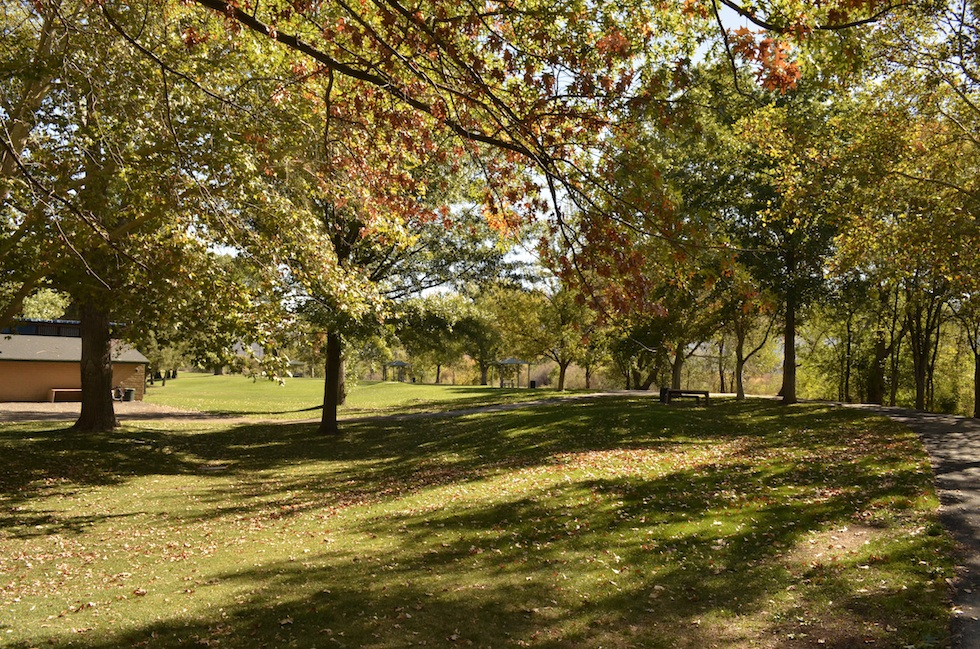 3 Cottonwood Park Site 1 Fall 2015 (low)