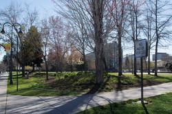 3 Bicentennial Park Site 1 March 2016 (low)