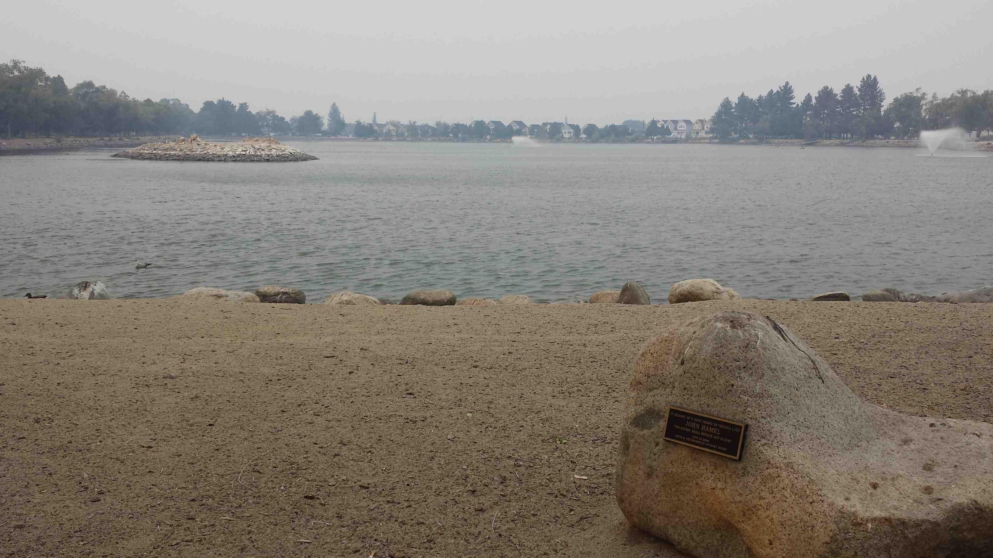 2 Virginia Lake Site 1 Fall 2014 (low)