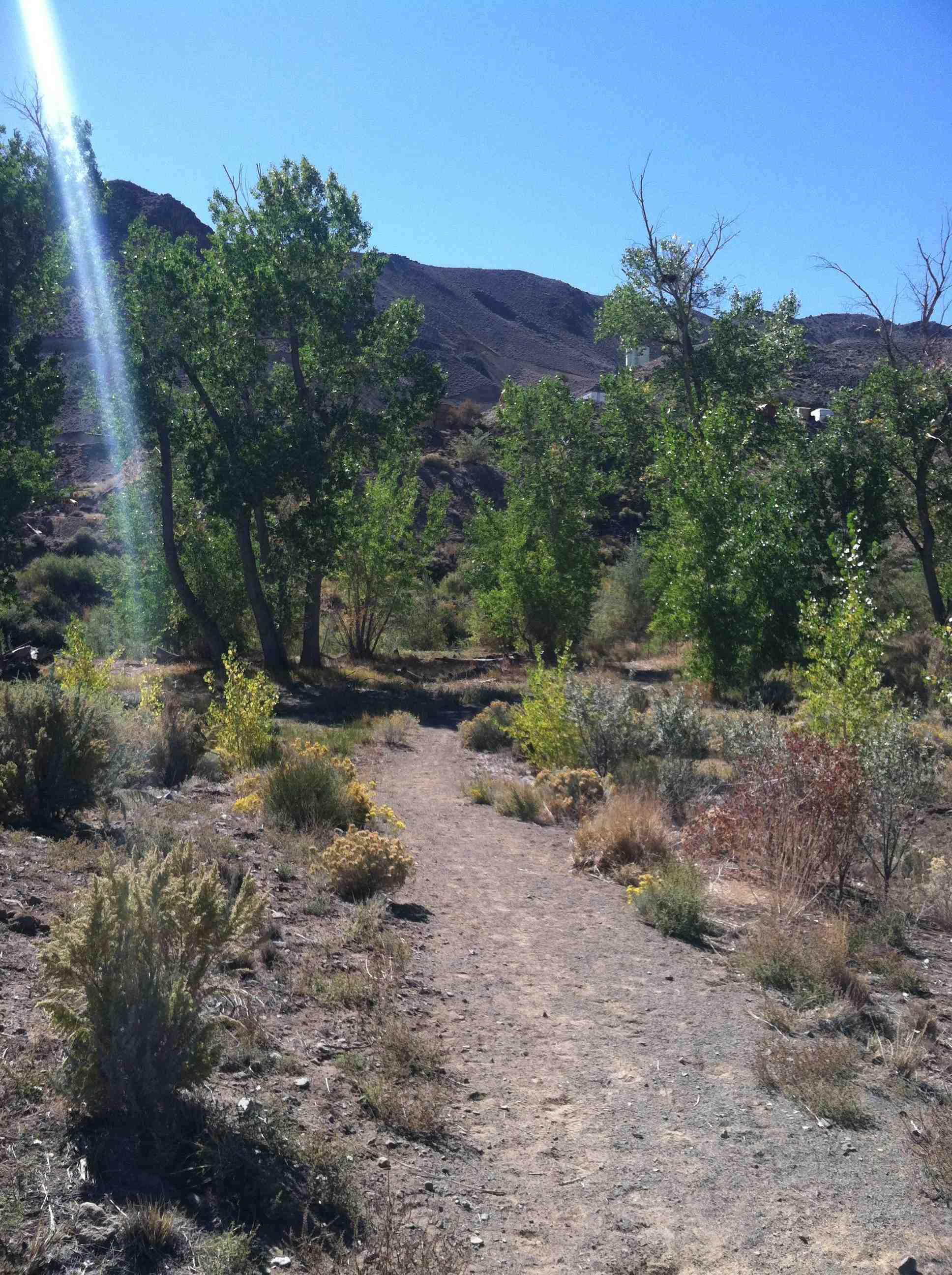 1 Lockwood Trailhead Site 3 Fall 2014 (low)