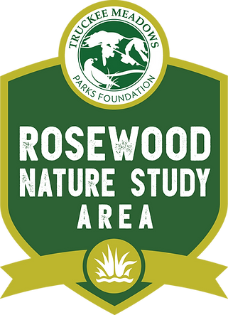 truckee-07-rosewood-nature-rgb.png