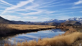 Truckee Meadows Nature Study Area