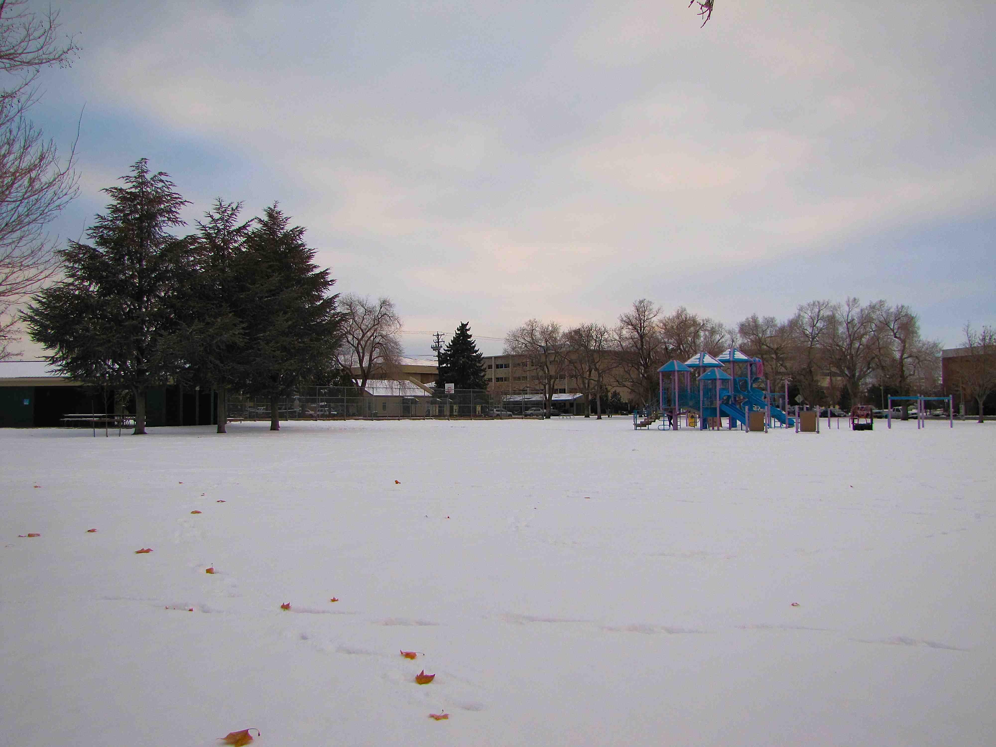 2 Pickett Park (Reno) Site 1 Winter 2013 (Low)